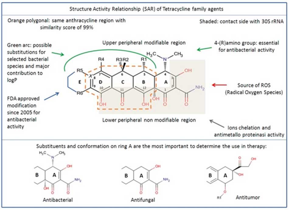 Cấu trúc hóa học tổng quát của các Tetracycline cũng như liên quan cấu trúc – tác dụng (SAR: Structure – Activity Relationship)