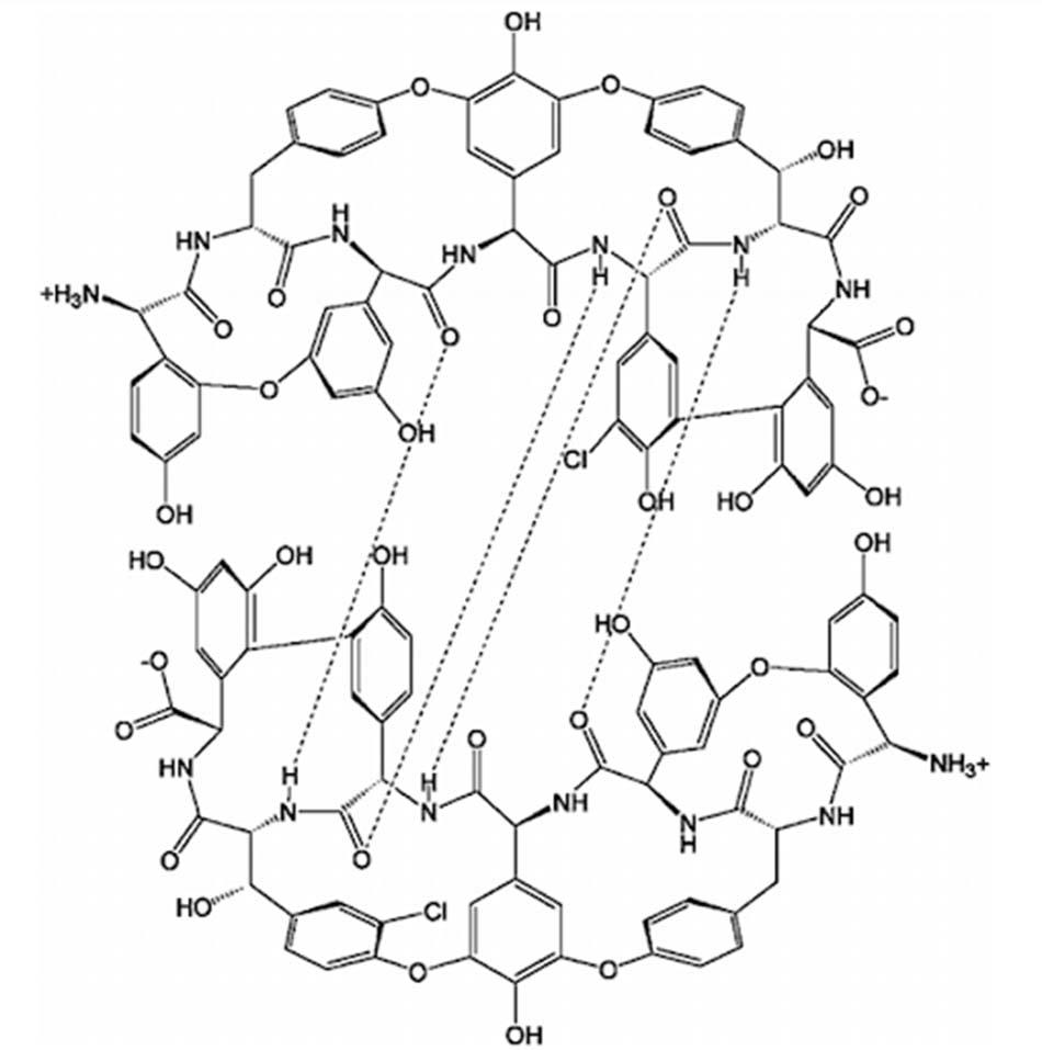 Biểu diễn dạng dimer hóa của lõi heptapeptide của Teicoplanin thông qua 4 liên kết hydro