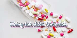 Kháng sinh nhóm Aminoside