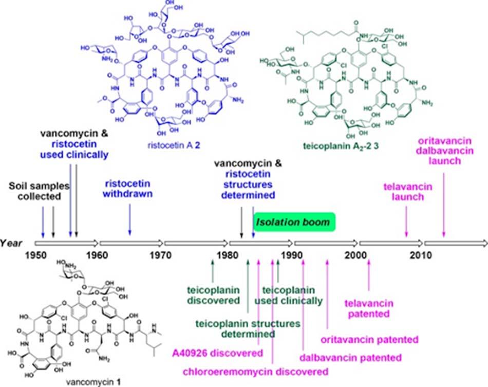 Ảnh: Lịch sử phát triển các kháng sinh nhóm Glycopeptide.