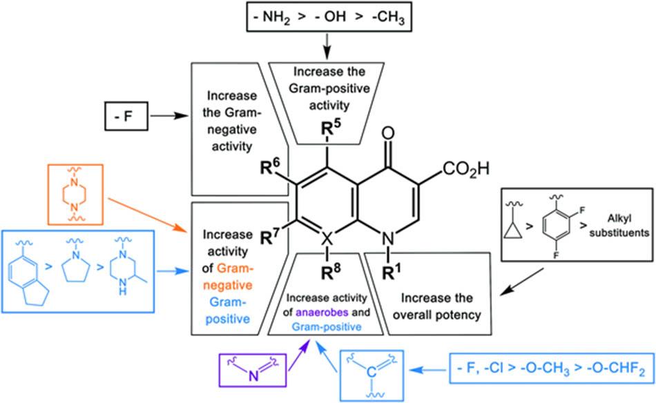 Cấu trúc hóa học tổng quát của các kháng sinh nhóm Quinolone cùng liên quan cấu trúc – tác dụng (SAR: Structure – Activity Relationship)