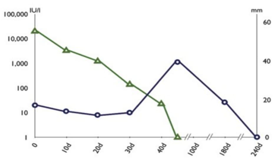 Hình 16.2 Biểu đồ thể hiện sự thay đổi kích thước thai (hình tròn) và nồng độ B-hCG huyết thanh (hình tam giác) sau tiêm MTX tại chỗ.