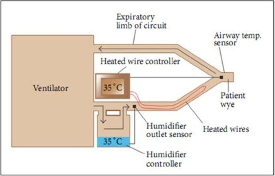 Hình 2: Máy tạo độ ẩm và ấm có dây nóng ở nhánh hít vào, được điều chỉnh từ các nguyên tắc cơ bản về chăm sóc hô hấp của Egan's Fundamentals of Respiratory Care, 10th edition, St. Louis:Mosby-Elsevier; 2012: 1424 [17]