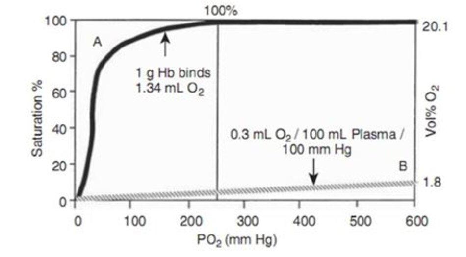 Hình 10-1 So sánh giữa đường cong phân ly của hemoglobin (đường cong A) và lượng oxy hòa tan trong huyết tương (đường cong B). Lưu ý rằng hemoglobin gần như được bão hòa 100% ở PO2 80 mm Hg. Khi bão hòa hoàn toàn, 15 g Hb sẽliên kết với 20.1 mL O 2. (From Duc G. Assessment of hypoxia in the newborn. Pediatrics. 1971;48:469.)