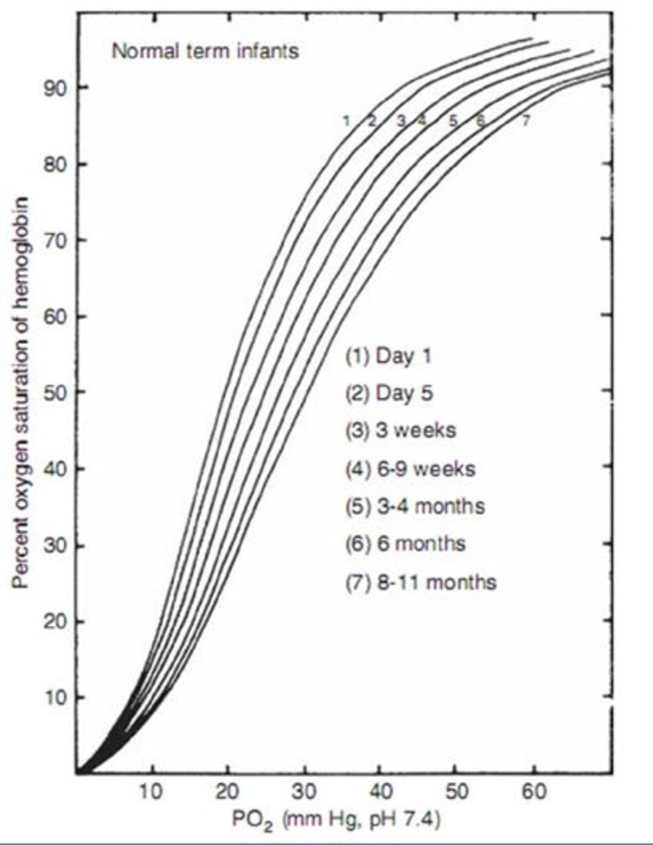 Hình 10-2 Đường cong phân ly oxyhemoglobine từ trẻ đủ tháng ở các độ tuổi khác nhau sau khi sinh. (From Delivoria-Popadopoulos M, Roncevic NP, Oski FA. Postnatal changes in oxygen transport of term, premature and sick infants. Ped Res. 1971;5:235.)