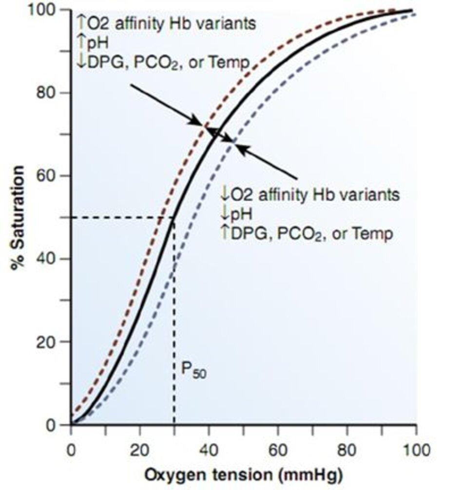 Hình 10-3 Đường cong phân ly oxy của Hemoglobin. Độ bão hòa phần trăm của hemoglobin với oxy ở các mức oxy khác nhau được mô tả bởi các đường cong dạng xích ma. P50, được chỉ định bởi các đường đứt nét, khoảng 27 mm Hg trong hồng cầu bình thường. Sự thay đổi chức năng hemoglobin làm tăng ái lực oxy thay đổi đường cong sang trái, trong khi những thay đổi làm giảm ái lực oxy chuyển đường cong sang phải. (From Kelley's Textbook of Internal Medi cine, 4th ed. Philadelphia, Lippincott Williams & Wilkins, 2000.)