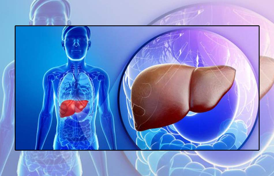 Hiệu chỉnh liều trên bệnh nhân bị suy giảm chức năng gan