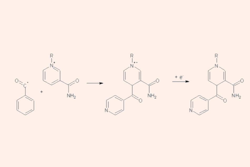 Sự hình thành của phức hợp Isoniazid-NAD(P)+ bằng phản ứng giữa gốc isonicotinoyl với NAD(P)+