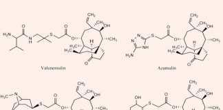 Kháng sinh nhóm Pleuromutilin