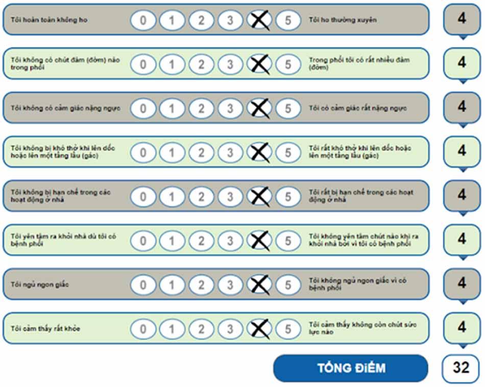 Hình 3. Bảng câu hỏi CAT trên website http://www.catestonline.org. Chú ý các điểm được đánh dấu ở trên chỉ là ví dụ minh họa.