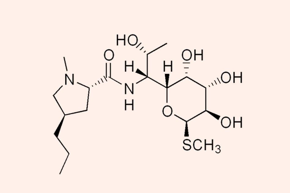 Ảnh. Cấu trúc hóa học của các Lincosamide.