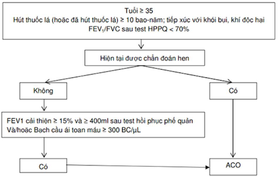 Hình 5. Chẩn đoán ACO được áp dụng thực tế tại Việt Nam hiện nay.
