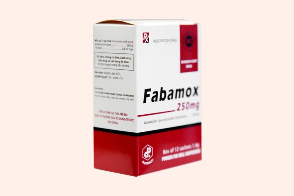 Hộp thuốc Fabamox 250mg