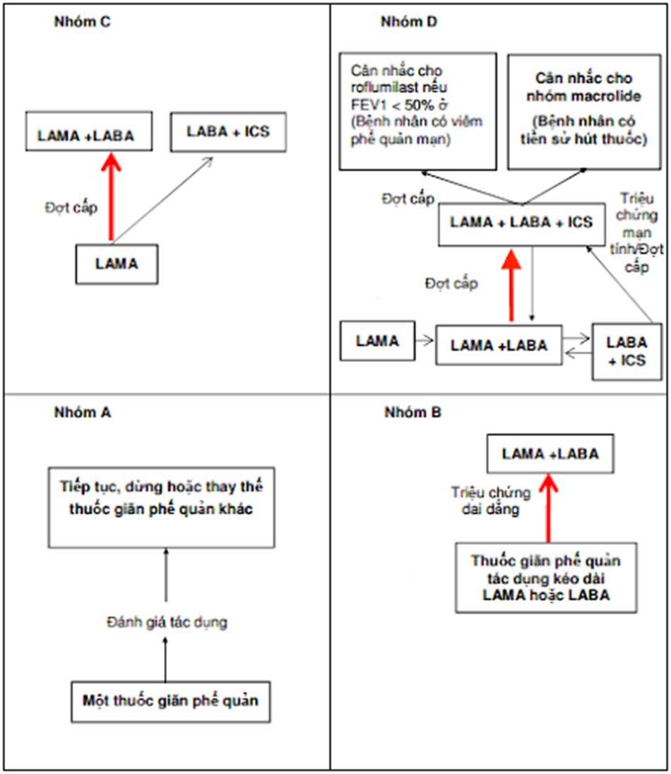 Hình 6. Tiếp cận lựa chọn thuốc điều trị cho bệnh nhân mắc COPD ổn định theo nhóm ABCD. Những mũi tên màu đỏ và ô có chữ được in đậm là lựa chọn điều trị ưu tiên.