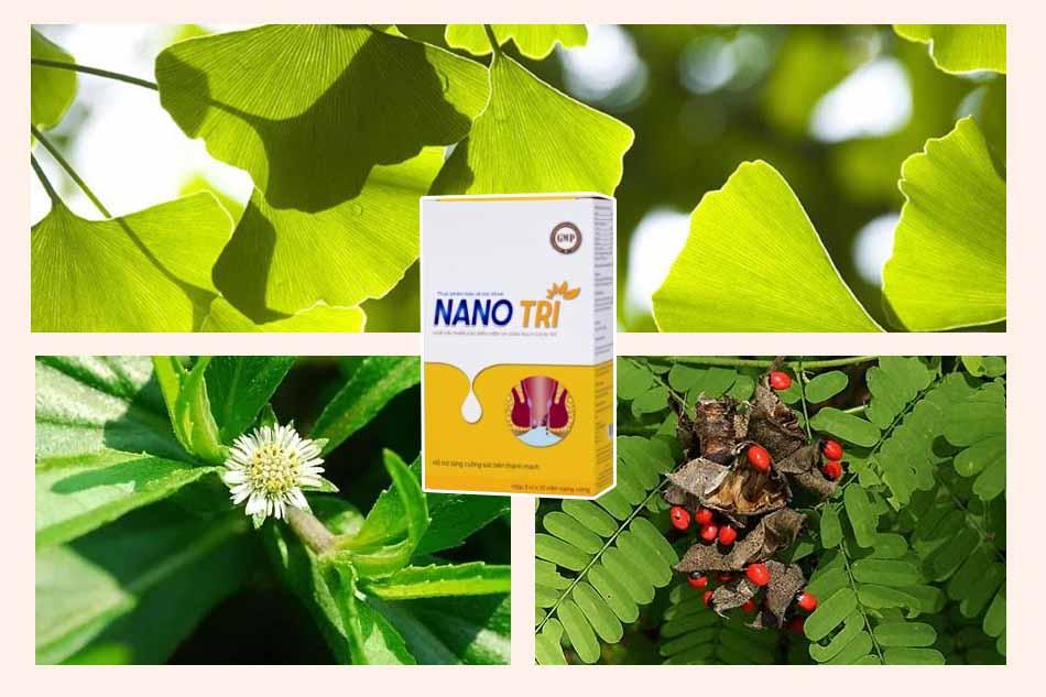 Thành phần của Nano Trĩ
