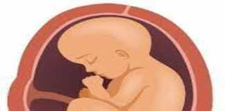 Quản lý thai đủ tháng muộn và già tháng trong khoa sản