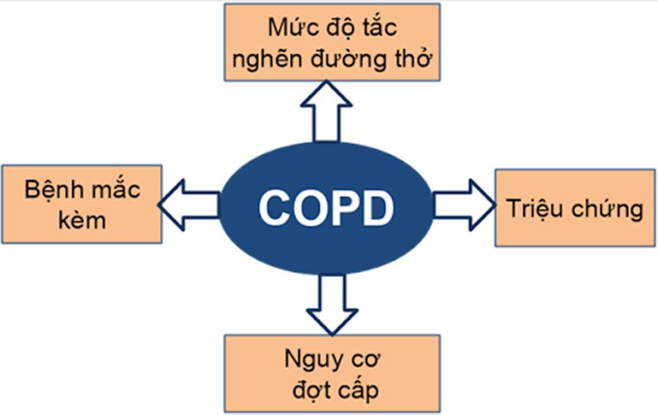 Hình 2. Các yếu tố cần đánh giá trong COPD.