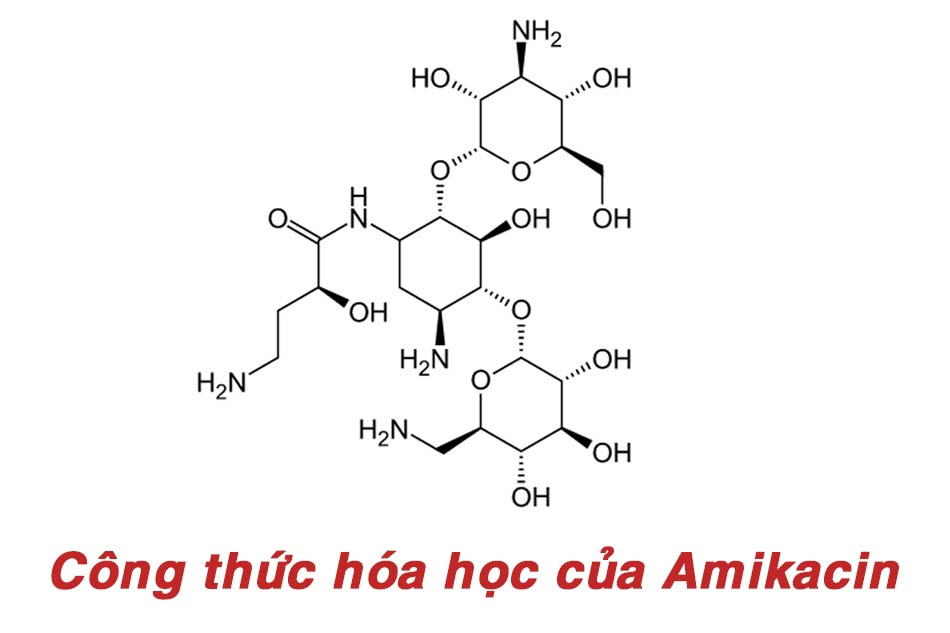 Công thức hóa học của thành phần Amikacin