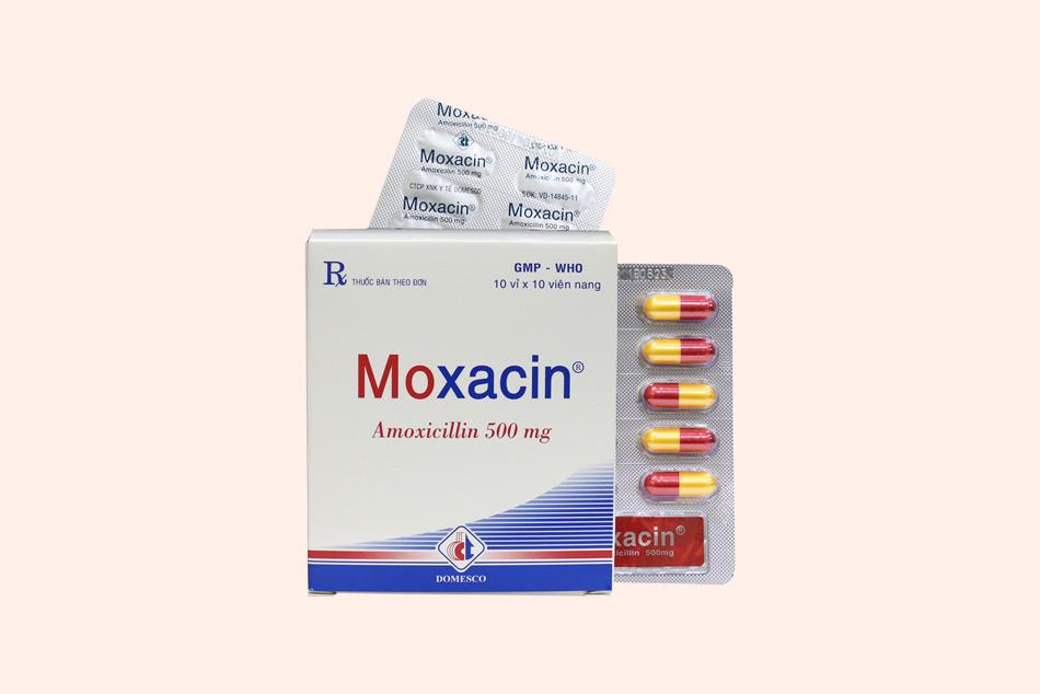 Dạng đóng gói của Moxacin
