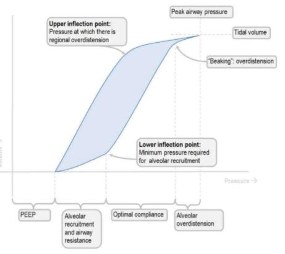 Hình 1: Vòng lặp áp lực - thể tích với điểm uốn dưới